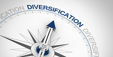 Divisification. Portfolio diversification using currencies